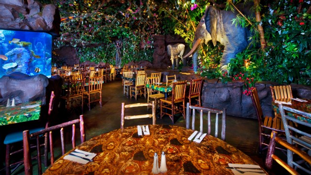 rainforestcafe